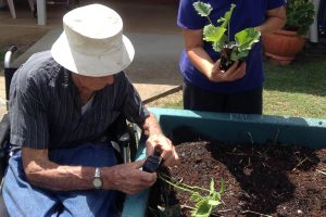 Gardening at Aged Care Home